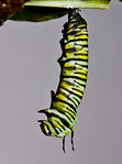 1:42:600 