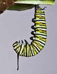 1:35:849 