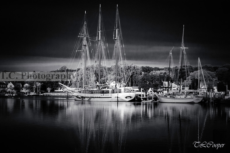 Tall Ships in B&W, Mystic CT