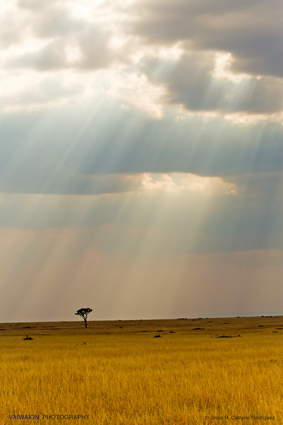The skies over Masai Mara (3)