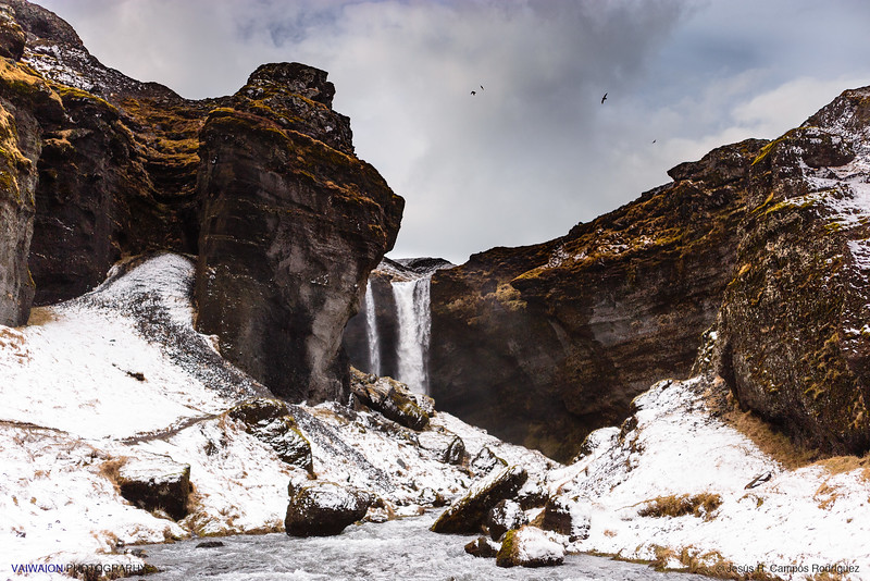 Kvernufoss Waterfall and Birds