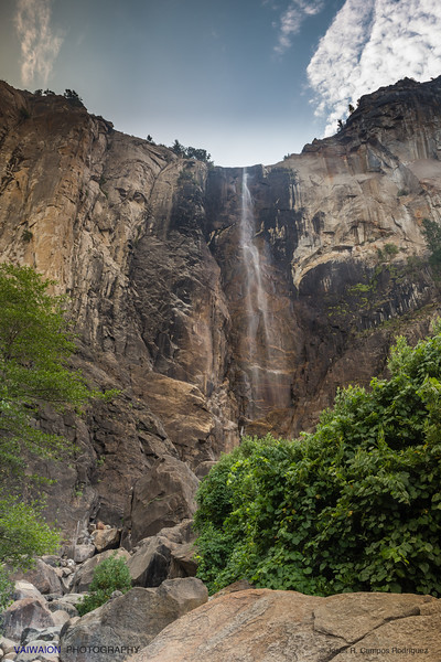 Bridalveil Fall in summer
