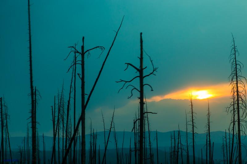 Yellowstone at sunset