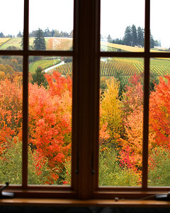 The view out our suite at Red Ridge Farms above the OLIVE MILL
