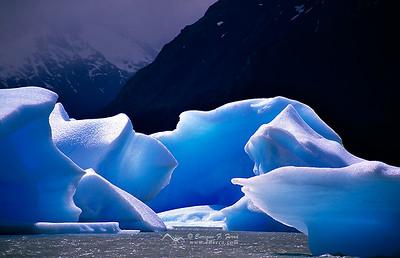 Azules y blancos en los tempanos del Lago Grey