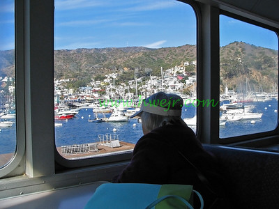 "An elderly passenger takes in Avalon Harbor when the ferry pulls in from the mainland. The foto is found in category "" Travel - CA ""  in gallery  "" Calif  Oct, 2005"" as image #0300"