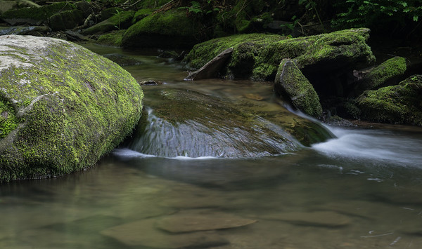 Profile Creek - Grandfather Mountain