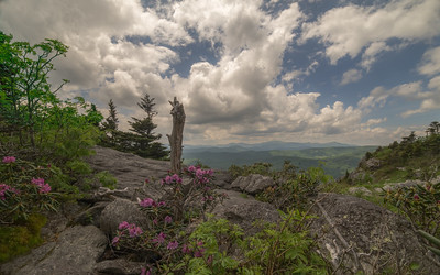 Vista from Grandfather Mountain