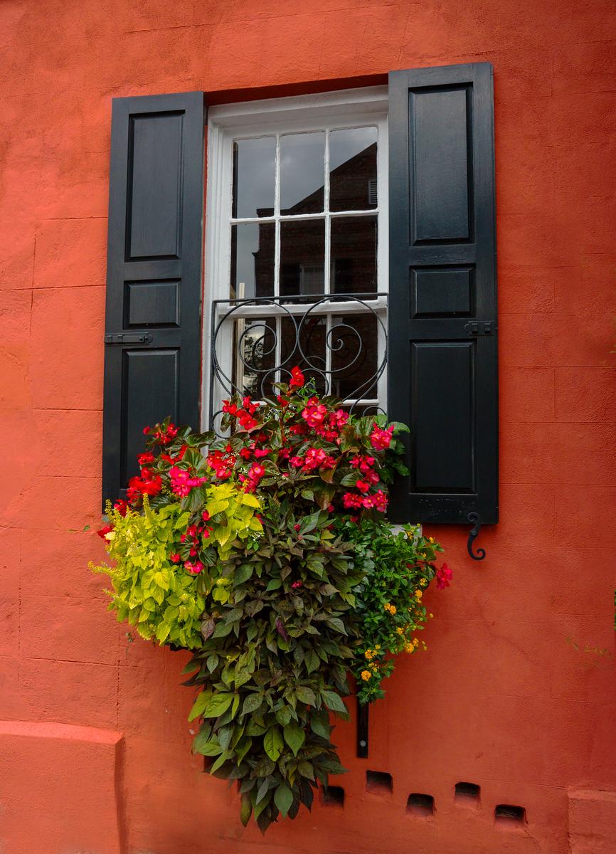 Window in Old Charleston, SC