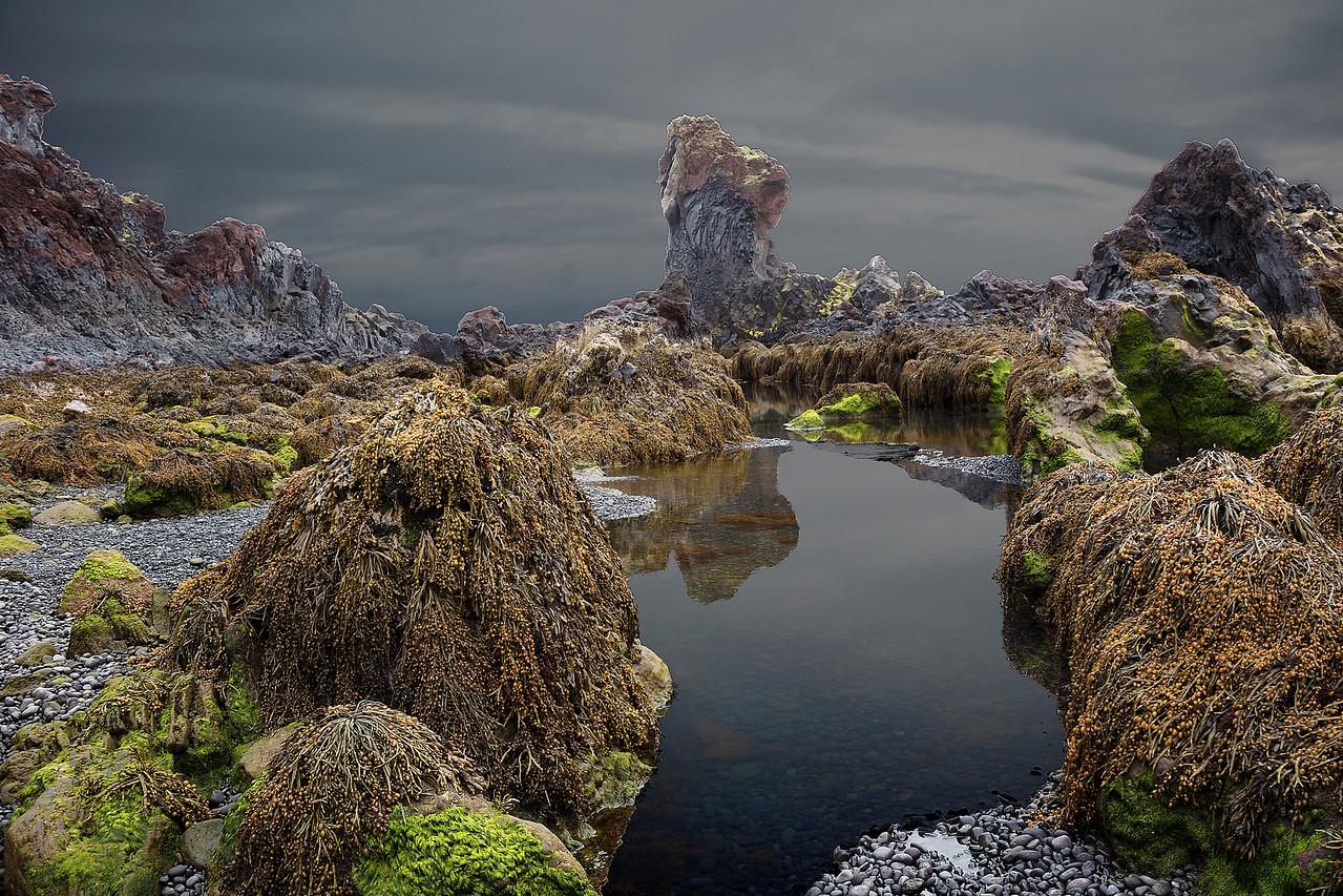 Tidal Marsh Iceland