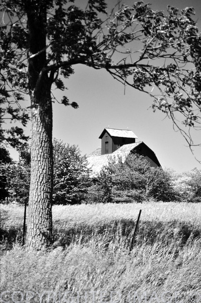 Barn at DeKalb - Ogle County line in Illinois