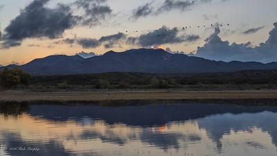 Sunset At The Crane Pond. Bosque Del Apache NM