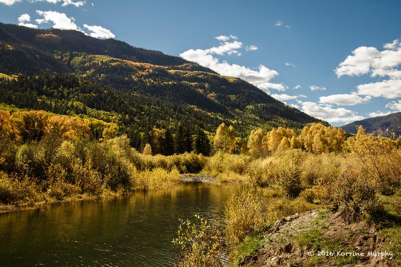 Fall Colors .Colorado