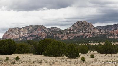 Western New Mexico