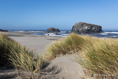 Walk by the sea. Bandon  OR