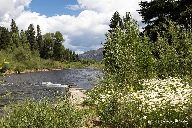 Conejos River.  Colorado