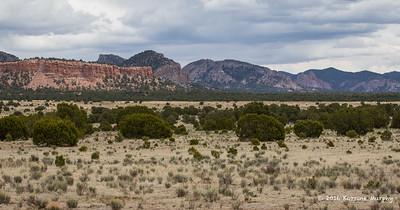 Western NM