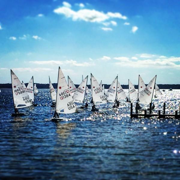 Lasers Returning in Fishing Bay - 2016 Chesapeake Bay Laser Masters Championship