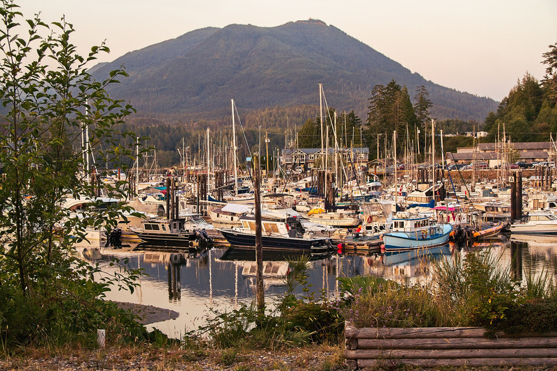 Ucluelet Harbor Evening Calm