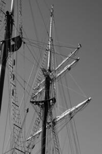Sail boat masts in Long Beach, CA