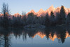 Oxbow Reflections