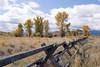 Fence across Wyoming