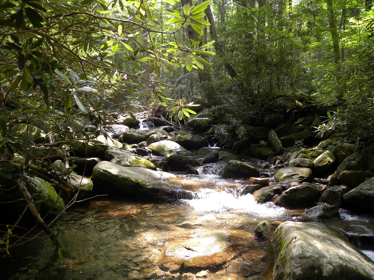 TN-2011-0717-1265