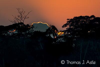 Sunrise over Peruvian Amazonia from the Rio Tambopata.
