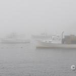 Monhegan Harbor fog