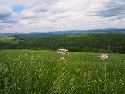 Highland County Virginia