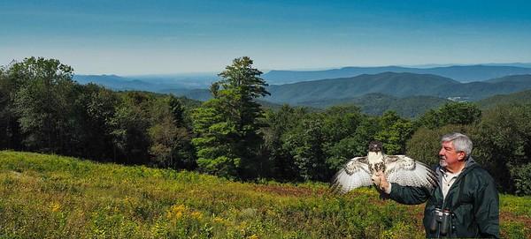 Shennandoah valley view
