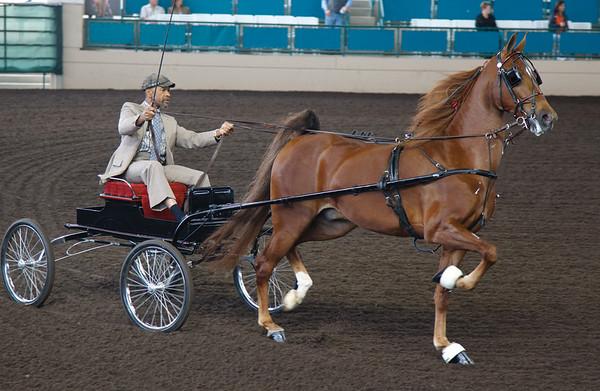 Horse Cart TAB11MK4-21754