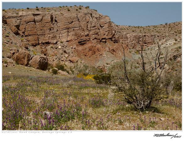 Hawk Canyon TAB11MK4-07364