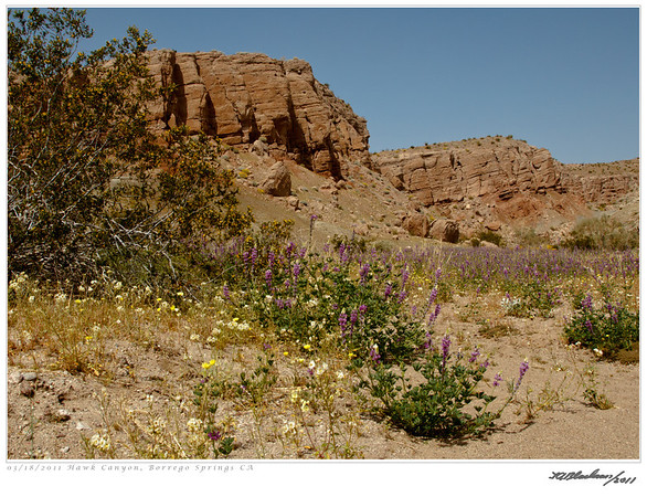 Hawk Canyon TAB11MK4-07358