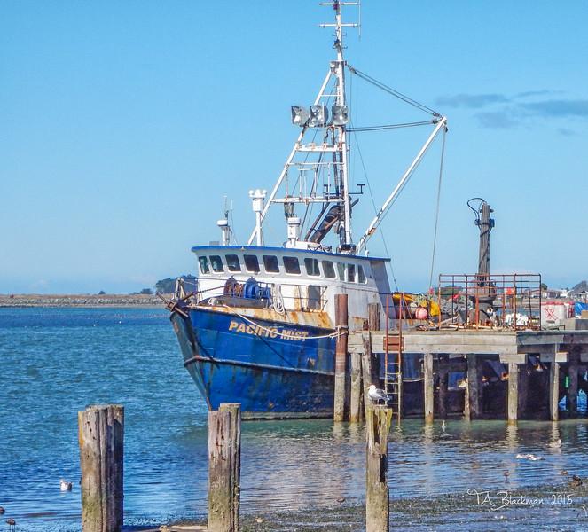 Humboldt Fishing Boat DSCN0326-Edit