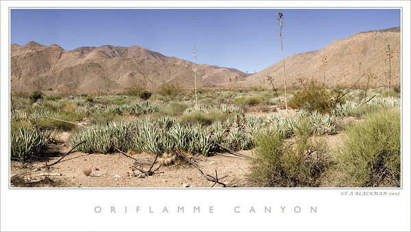Oriflamme Canyon