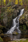 Goldmine Brook Falls 1