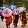monks walking at Angkor Wat