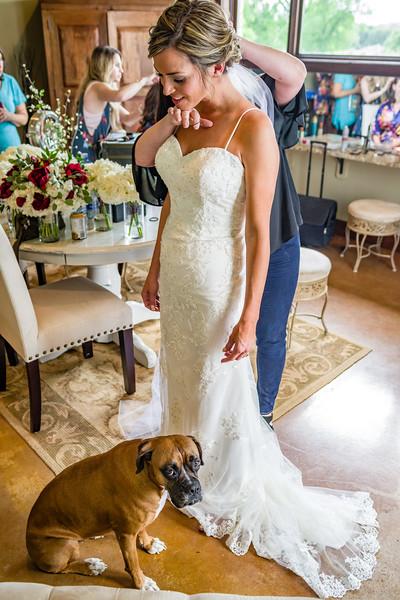 Nova the bridesmaid.