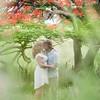 Engagement session couple under Famboyan tree
