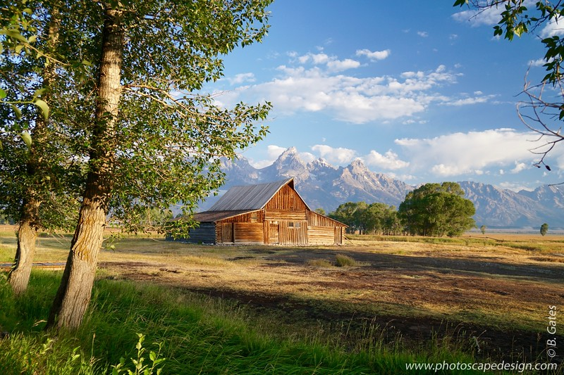 Mormon Row - Jackson, Wyoming