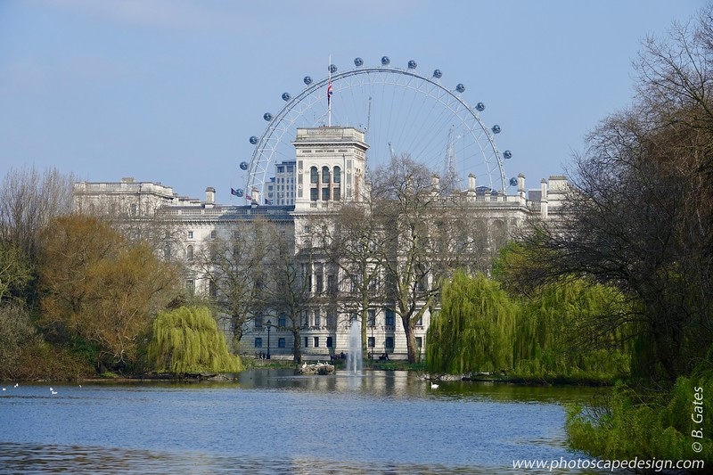 Royal Stables & London Eye Buckingham Palace
