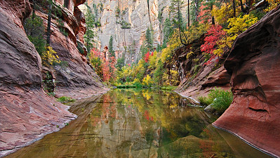 Reflection Pool A long pool reflects the colorful leaves and sandstone along West Fork of Oak Creek Canyon.
