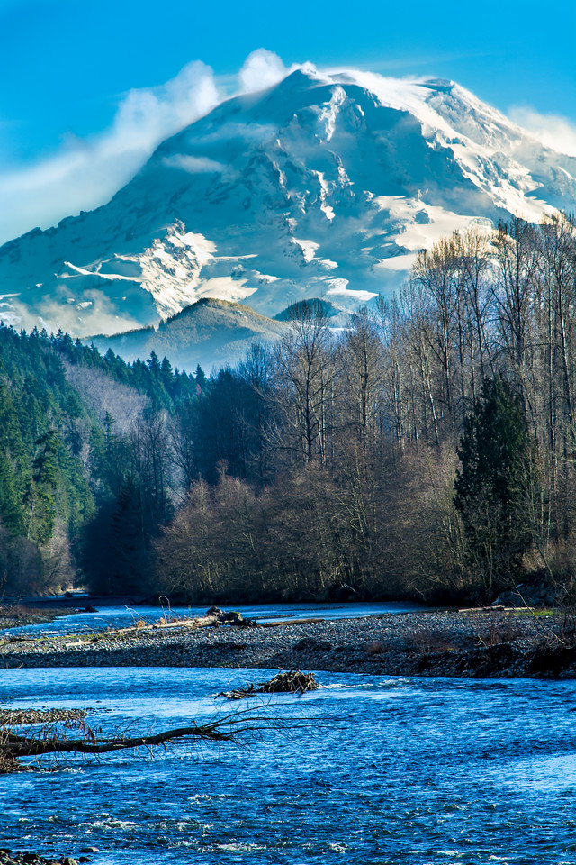 Mount Rainier Carbon River Orting Portrait