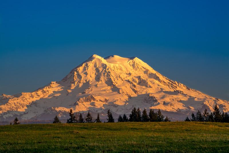 Golden Hour Mount Rainier