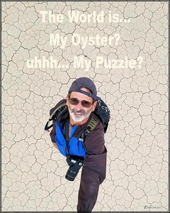 robcat_caption_oyster_puzzle_os