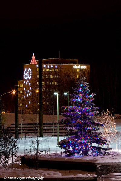 Anchorage, Alaska<br /> December 10, 2008