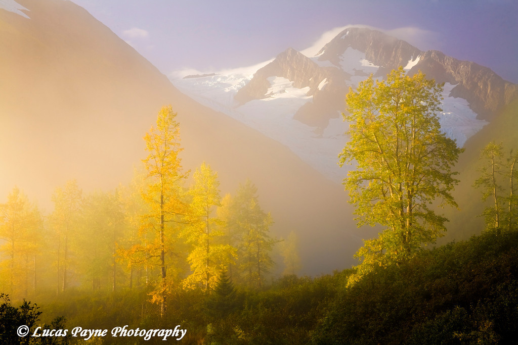 Portage Valley Foggy Sunrise<br /> September 2009
