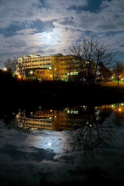 Evening at the Trier University pond