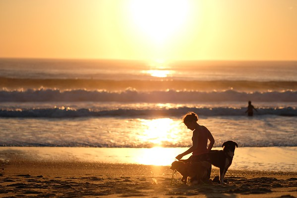 Woman with her two dogs at the beach